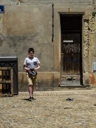 Avignon-3291